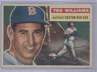 Ted Williams (Gray Back) [PoortoFair]