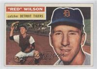 Red Wilson (White Back)