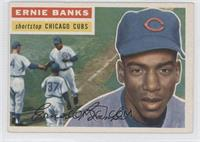 Ernie Banks (Gray Back)