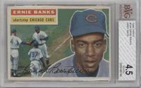 Ernie Banks (Gray Back) [BVG 4.5]