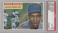 Ernie Banks Grey Back [PSA 4]