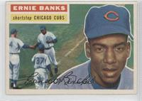 Ernie Banks Grey Back
