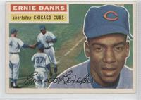 Ernie Banks Grey Back