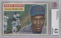 Ernie Banks (White Back) [BVG4.5]