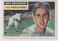 Dick Brodowski (Gray Back)