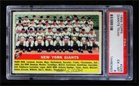 New York Giants Team [PSA6]