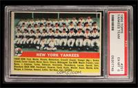 New York Yankees Team [PSA 6]
