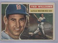 Ted Williams (Gray Back) [Good to VG‑EX]