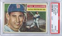 Ted Williams (White Back) [PSA 2.5]
