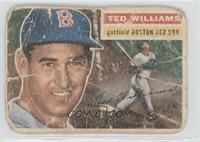 Ted Williams (White Back) [Poor]