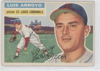 Luis Arroyo (Gray Back)