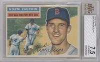 Norm Zauchin (White Back) [BVG7.5]