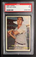 Ted Williams [PSA 7]