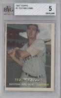 Ted Williams [BVG 5]