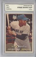 Ernie Banks [ENCASED]