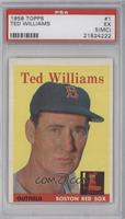 Ted Williams [PSA 5 (MC)]