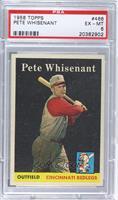 Pete Whisenant [PSA6]