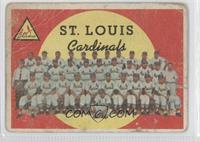 St. Louis Cardinals Team (Grey Back)