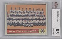 New York Yankees Team [BVG 6.5]