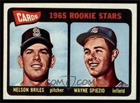 Cardinals 1965 Rookie Stars (Nelson Briles, Wayne Spiezio) [NM]