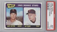 Twins 1965 Rookie Stars (Gary Dotter, Jay Ward) [PSA7.5]