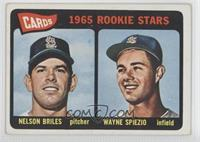 Cardinals 1965 Rookie Stars (Nelson Briles, Wayne Spiezio)