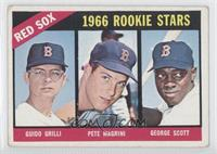Red Sox Rookies (Guido Grilli, Pete Magrini, George Scott) [Good to V…