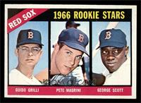 Red Sox Rookies (Guido Grilli, Pete Magrini, George Scott) [NM]
