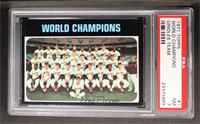 Baltimore Orioles Team (World Champions) [PSA 7]