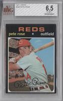 Pete Rose [BVG 6.5]