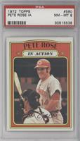 Pete Rose (In Action) [PSA 8]
