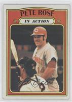 Pete Rose In Action