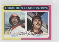 Home Run Leaders - 1974 (Dick Allen, Mike Schmidt)