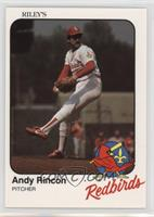 Andy Rincon