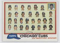Team Checklist - Chicago Cubs