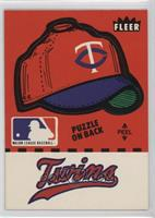 Minnesota Twins Team (Hat with Text Puzzle on Back)