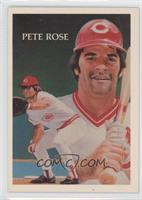 Pete Rose (base)