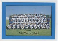 Toronto Blue Jays Team