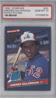 Andres Galarraga (Error: No Accent Mark over Name on Back) [PSA10]