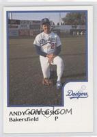 Andy Naworski