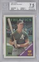 Topps All-Star Rookie - Mark McGwire [BGS 7.5]