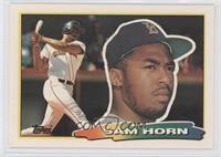 Sam Horn