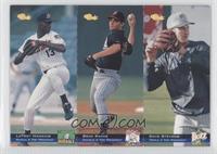 LaTroy Hawkins, Dave Stevens, Brad Radke /8000