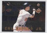 Cal Ripken Jr. /500