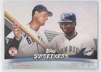 Tony Gwynn, Ted Williams