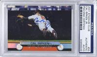 Cal Ripken Jr. [PSA/DNACertifiedAuto]