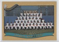 Miami Marlins (Florida Marlins) Team /2002