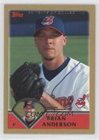 Brian Anderson /2003