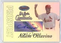 Autograph - Adam Ottavino