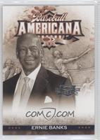 Ernie Banks /500